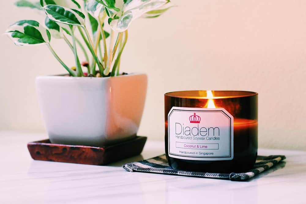 Diadem candle and a plant