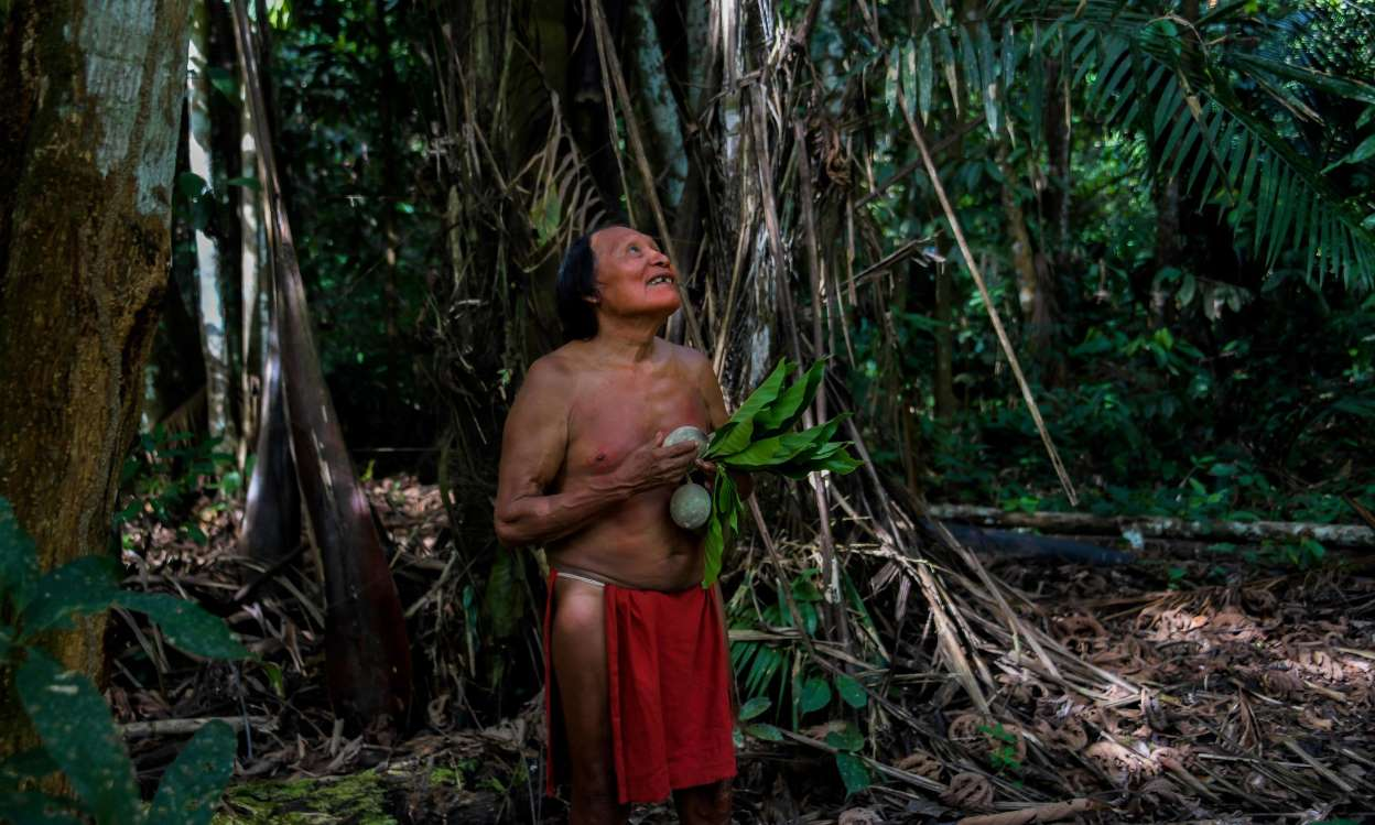 indigenous reserve brazil green is the new black