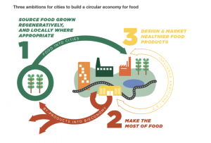 circularity food ellen macarthur foundation green is the new black