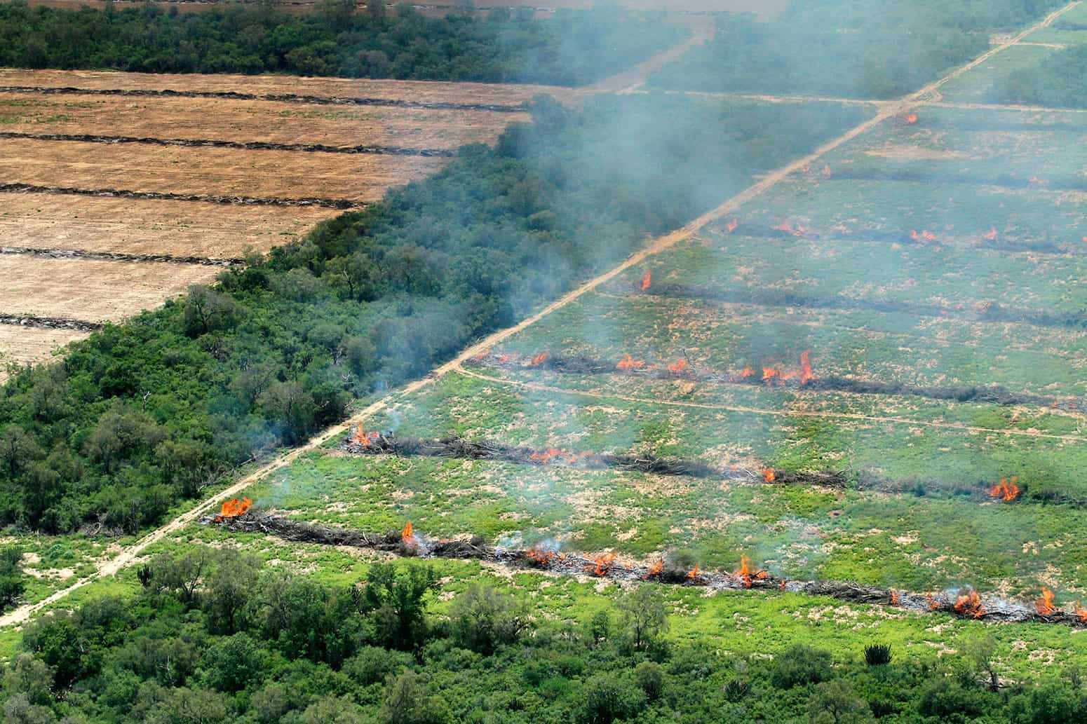 Gran Chaco deforestation Paraguay Green Is The New Black