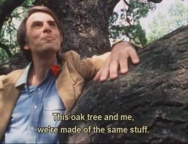 oak tree carl sagan green is the new black